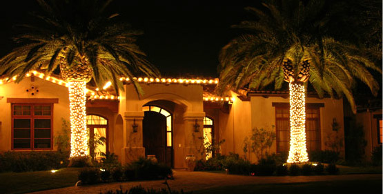 Christmas Lights In Palm Trees.Las Vegas Christmas Lights Affordable Christmas Light